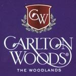CW_logo-t