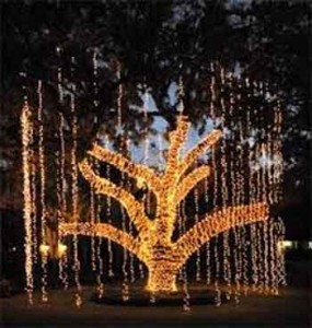 Holiday Lighting by Experienced Houston Electricians